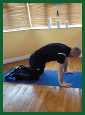 cat camel exercise |low-back by Naas Physio & Chiropractic Clinic