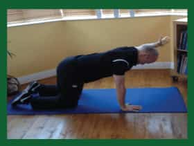 plank-exercise---low-back by Naas Physio & Chiropractor Clinic